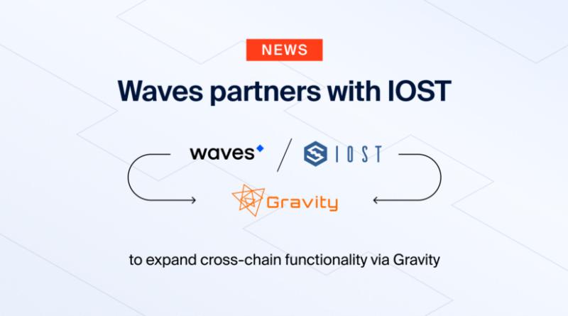 Gravity Protocol e IOST