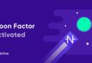Moon Factor Neutrino